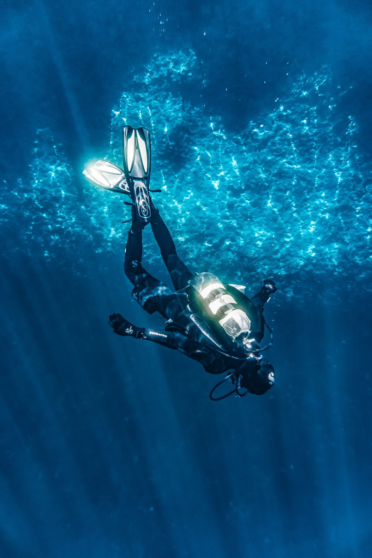 Read more about the article Best SCUBA Diving Spots In Hawaii